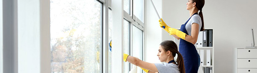 The Best Ways to Clean Your Window Screens